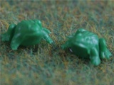 Set van 6 kikkertjes plastic